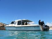 Kangaroo Island Dive and Adventures
